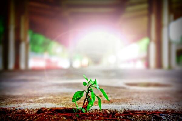 Vind hier een goede business coach die bij jou past en die jou als (startende) ondernemer kan helpen groeien.